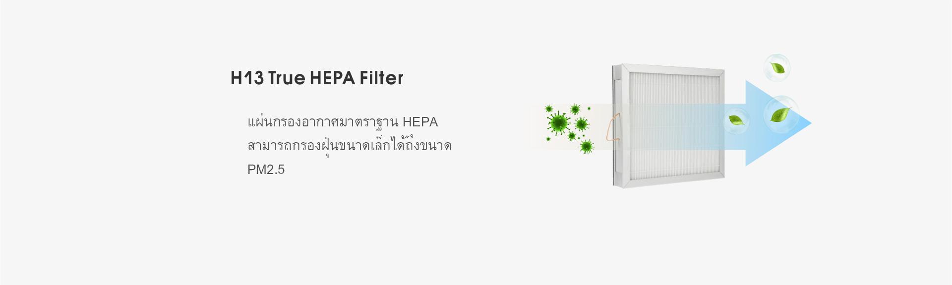 แผ่นกรองอากาศ (HEPA Filter Panel)